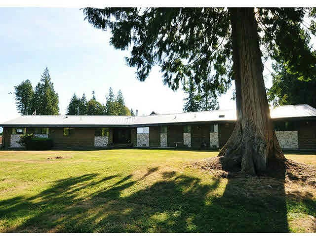 12610 ANSELL STREET, Maple Ridge