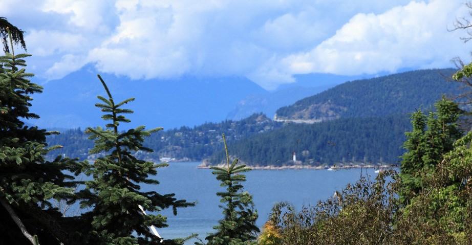 5988 NEWTON WYND, Vancouver