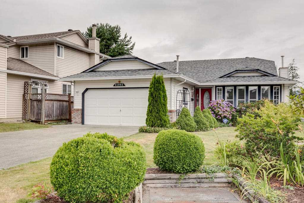 21903 126 AVENUE, Maple Ridge