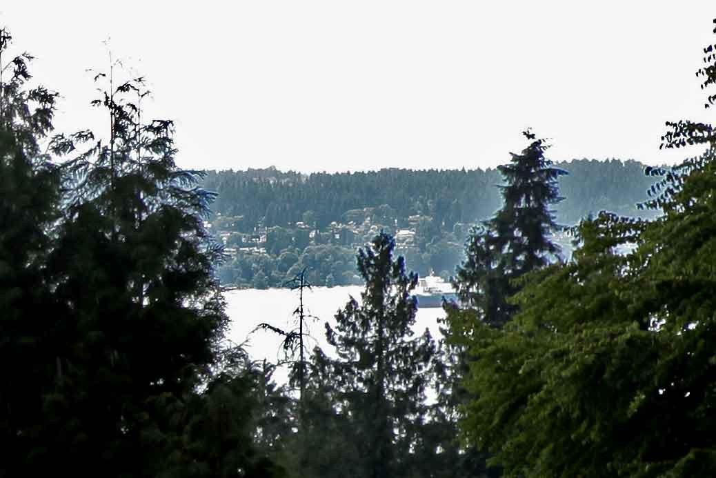 1290 QUEENS British Properties, West Vancouver (R2190966)