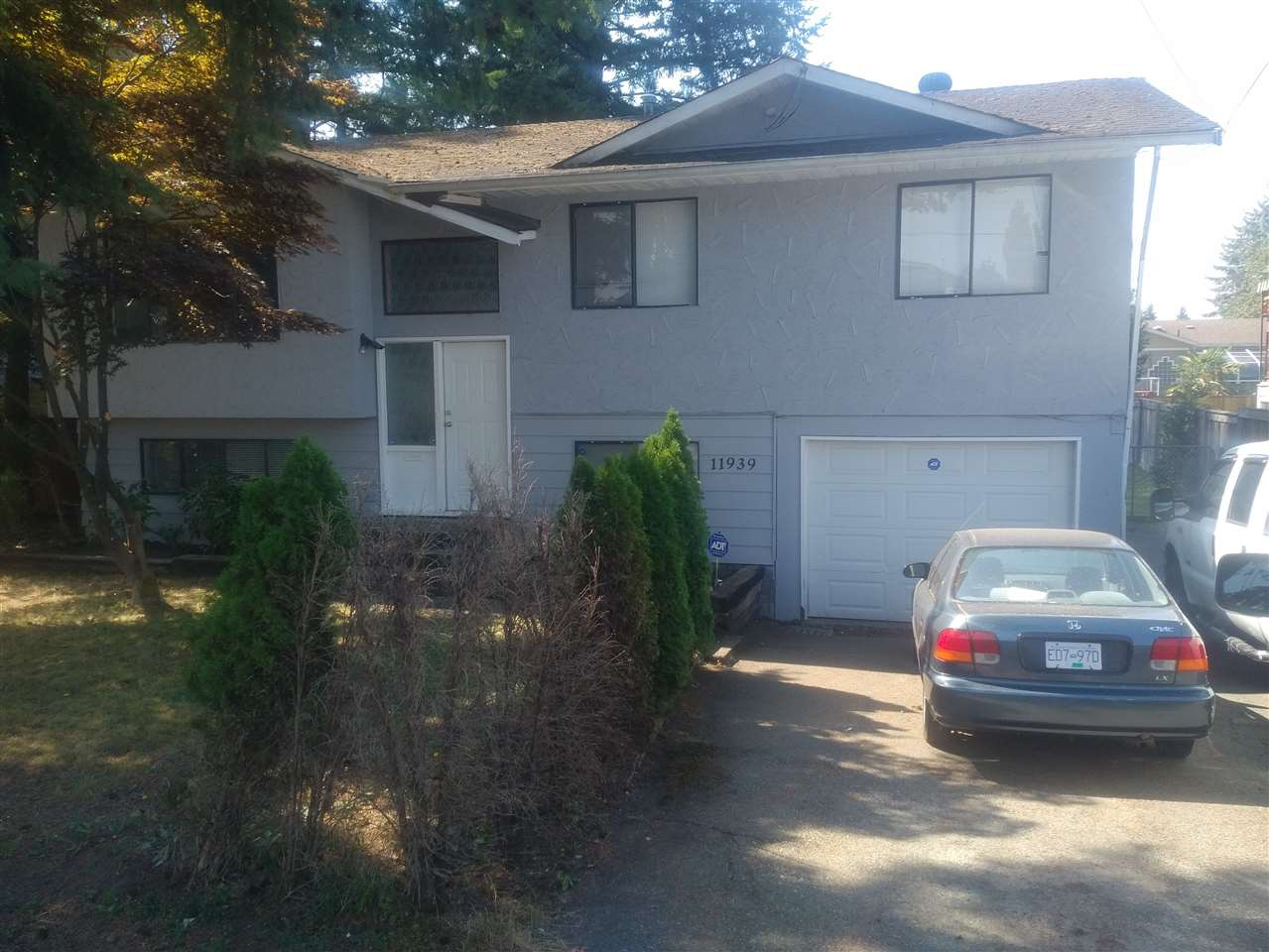 11939 LAITY STREET, Maple Ridge