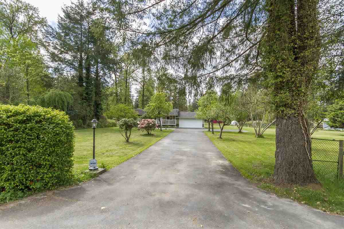 12977 224 STREET, Maple Ridge