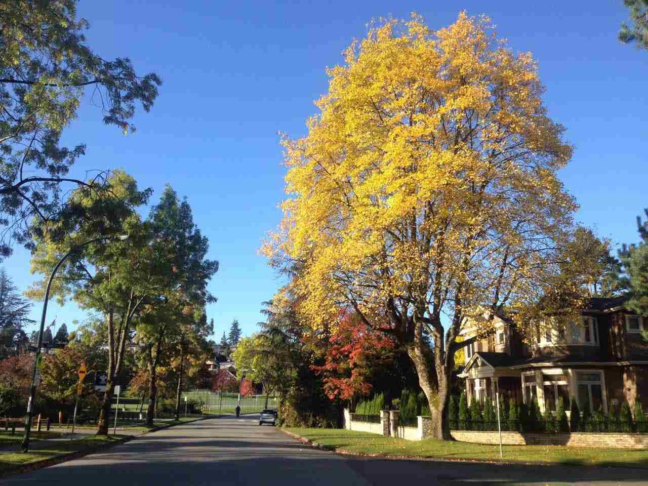 2263 EDDINGTON Quilchena, Vancouver (R2207539)