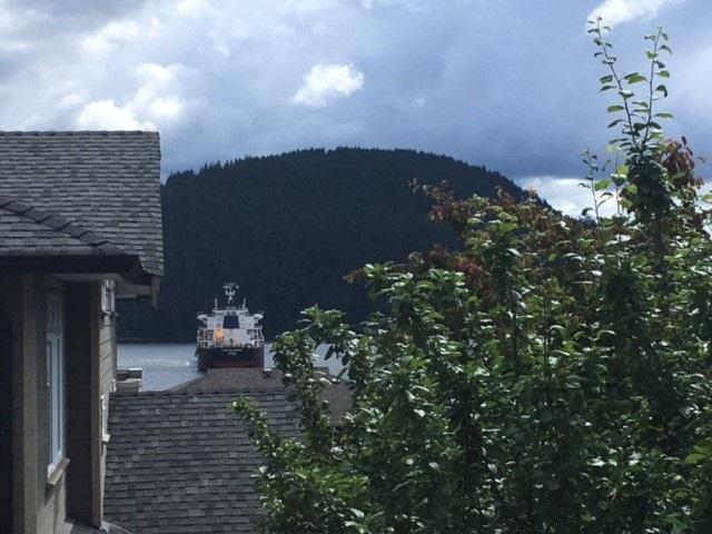 488 ROSLYN Dollarton, North Vancouver (R2263646)