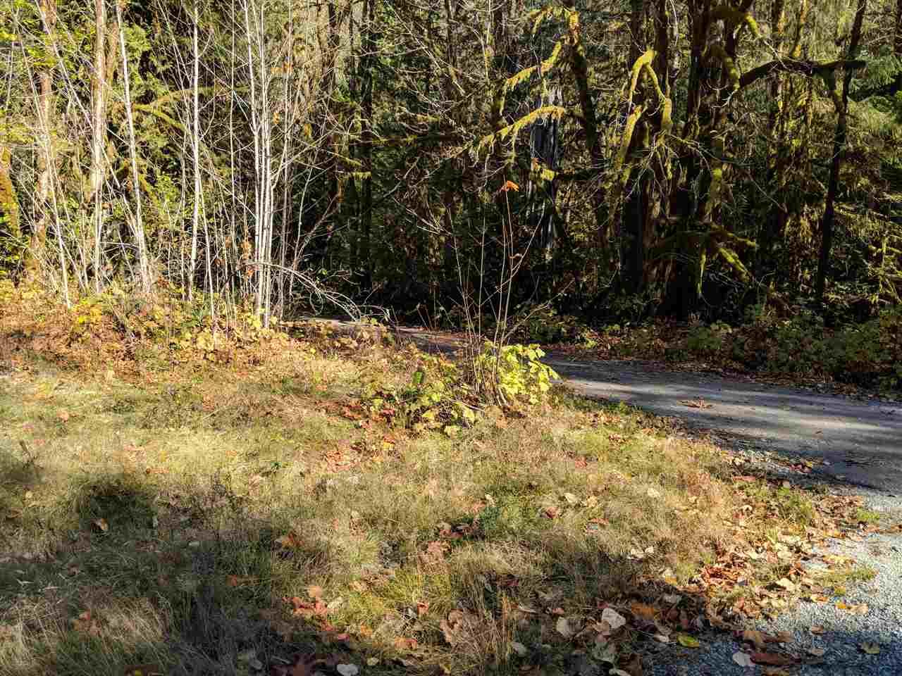 DL1513 SQUAMISH VALLEY ROAD, Squamish