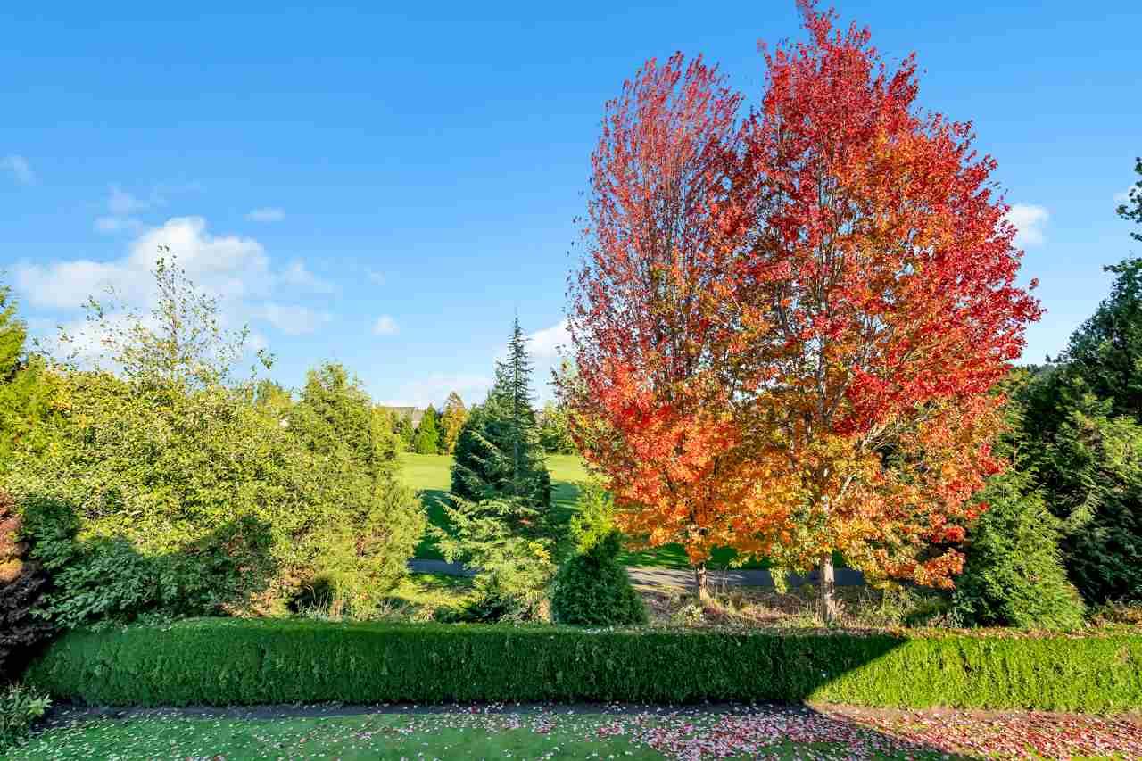 16355 LINCOLN WOODS COURT - Morgan Creek - Surrey